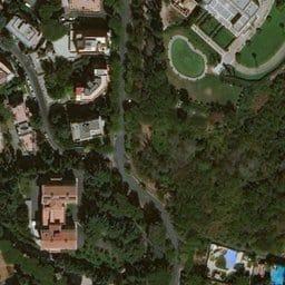 """Roma, Fronte Verde: """"no all'abbattimento degli alberi voluto dal Comune"""""""