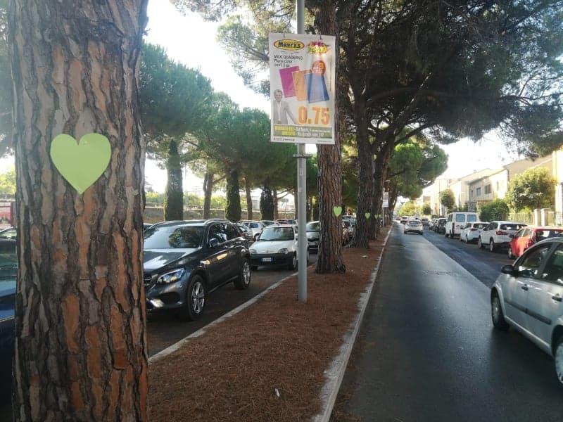 """Grosseto, Fronte Verde: """"I cuori su quei pini esempio di crescita di una sensibilità ambientale"""""""