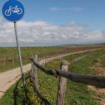 """Grosseto, Fronte Verde: """"Bene la ciclabile per Alberese"""""""