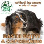 """Grosseto, Fronte Verde: """"Appello a stoppare il consumo di petardi"""""""